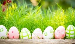 Húsvét, avagy tojás gurítás!